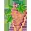 Rosé Wines Image